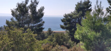 Land 4170 m² in Sithonia, Chalkidiki